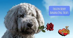 Frozen Berry Banana Dog Treats